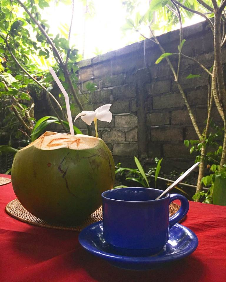 Indonesia, Bali, Ubud, Индонезия, Бали, Убуд, coffee, coconut, кокос, кофе