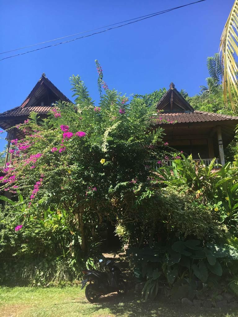 Водный дворец Тиртаганга на Бали, дом