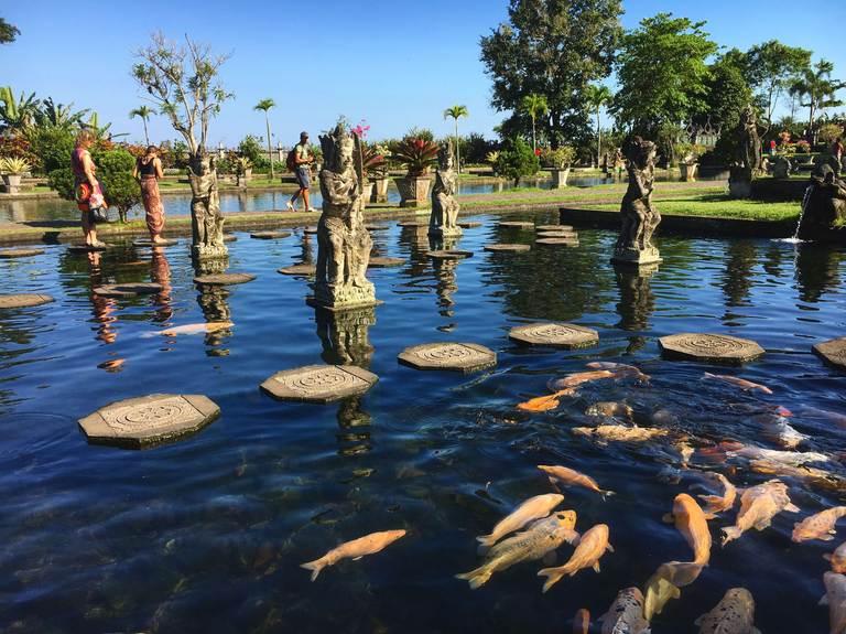 Водный дворец Тиртаганга на Бали, золотые карпы
