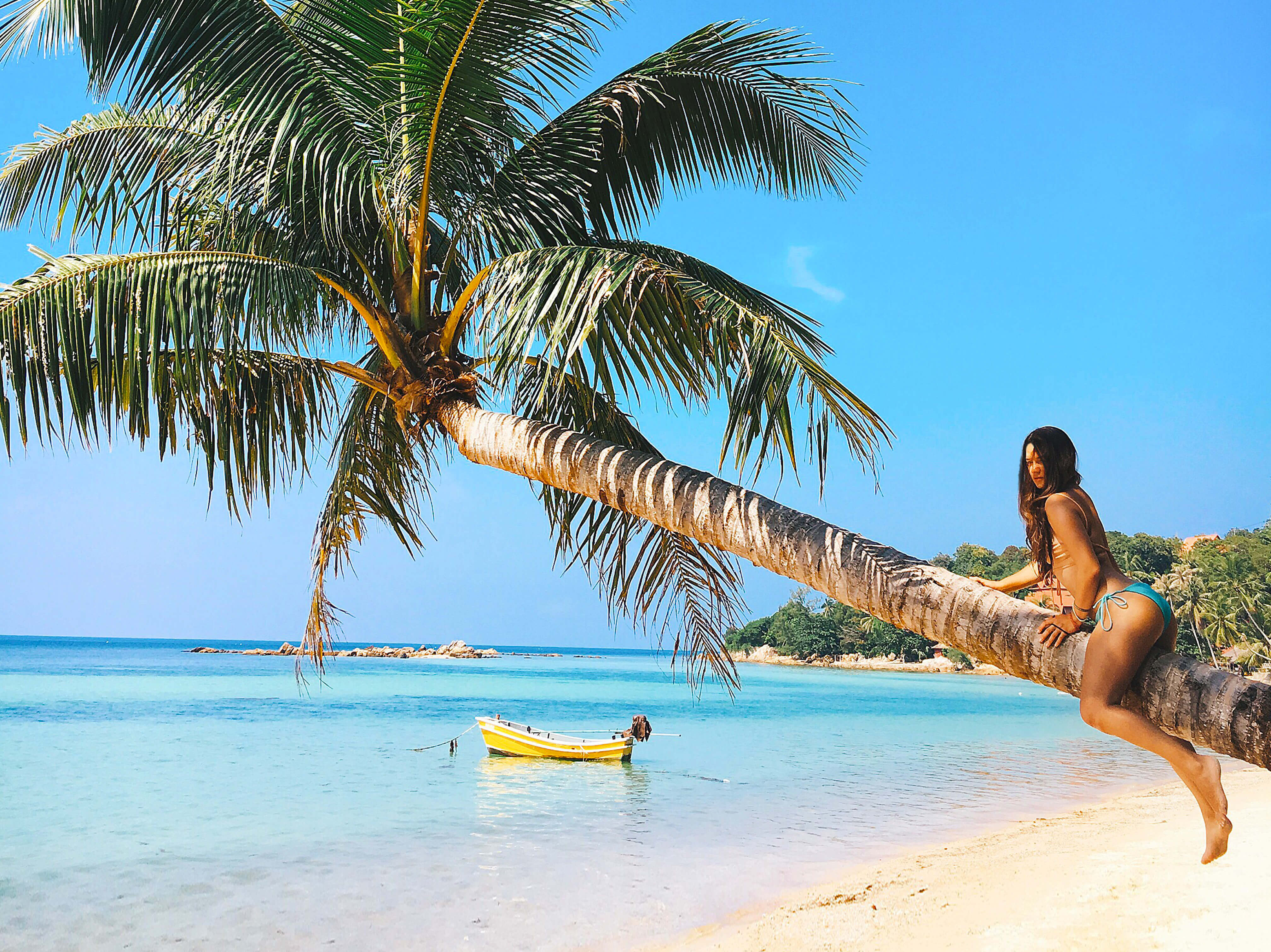 Thailand, Phangan, island, beach, palmtree, sea, Таиланд, Панган, остров, пляж, пальма, море